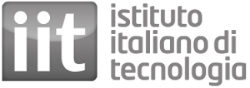 Istituto Italiano di Tecnologia (IIT)